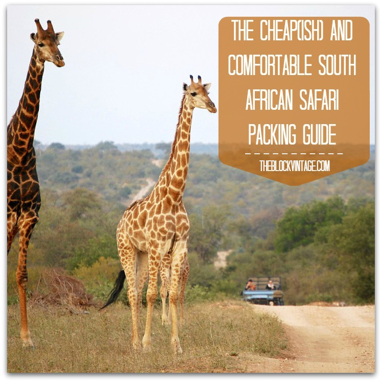 The Cheap and Comfortable South African Safari Packing Guide